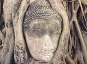 Buddha rivoluzionario
