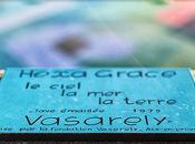 Hexa Grace Victor Vasarely