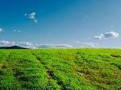 #sturzo l'#agricoltura: unire terra cielo