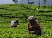 Lanka: info utili