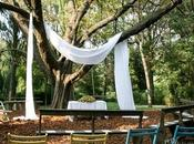Matrimonio campestre: sposarsi sotto albero