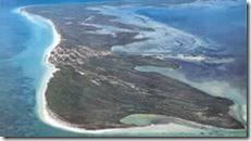 Holbox Island, paradiso sconosciuto fenicotteri squali balena