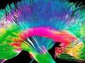 Autoipnosi, ipnosi Neuroscienze