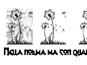 [Recensione] Promettimi accadrà Isabella Spinella