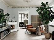 Piante oversize valorizzare casa
