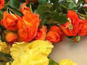 #fioridivenerdì- pomeriggio fiori