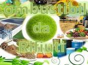 14/03/2016 Grassi animali: Ministro Galletti firma decreto inserisce biomasse combustibile