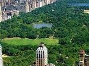 euro mese vivere passo central park. mica tanto essere york...