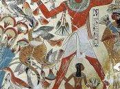 colori nell'antico Egitto