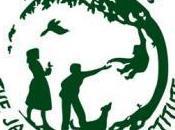 Educare all'ambiente: intervista Mrs. Zwisler, Direttrice Roots Shoots Cina
