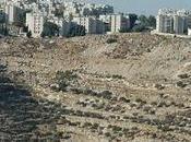 Palestina: genesi evoluzione degli insediamenti israeliani Cisgiordania