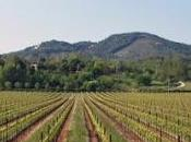 Slow Food Veneto insieme Asolo Wine Tasting
