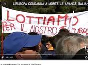 Arance rosso sangue, Sicilia ribella!