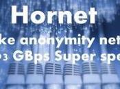 Hornet, l'alternativa alla rete
