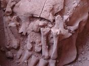 Archeologia. antica decapitazione Nuovo Mondo