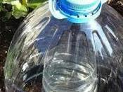 Innaffiare piante riciclando vuoti plastica: coltivare terra