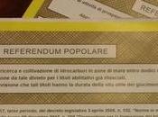 Ciaone referendum