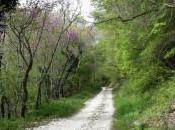 ferrovia spoleto-norcia