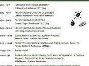 """Workshop opportunità della carbon Finance ONG"""""""