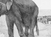 ragionamenti professor Garibozzi attorno mammut allo shopping