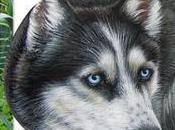 Ritratto Kristal Sassi dipinti cani