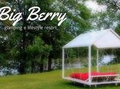 Glamping Berry: natura charme