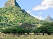 Cosa fare Mauritius: giorno Casela World Adventures