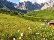 Prenota subito presso l'Hotel Monzoni vacanze cuore delle Dolomiti