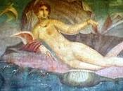 Molluschi storia arte.