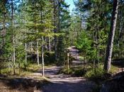 Nuuksio National Park: escursione nella natura finlandese