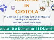 Armonie ciotola Alimentazione casalinga sostenibile Forlì, Sabato Domenica Dicembre 2016