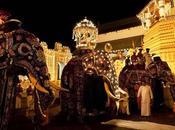 Reportage: spettacolare Festa Dente Buddha Lanka