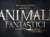 """attesa film """"Animali fantastici dove trovarli"""" HarperCollins Italia"""