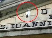 Riparbella (PI) Conigli appesi alla facciata della chiesa spaventare piccioni