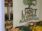 Ritorno banchi Agroecologia