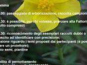 Erbablitz d'autunno Montemitro. Incontro appassionati botanica