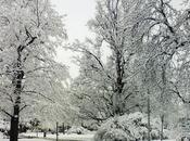 Aspettando neve: quando arriva l'inverno Praga