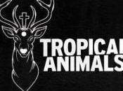Tropical animals Halloween party