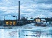 Dalla Scozia Giappone all'Italia: giro mondo micro distillerie