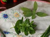 Burro salato alle erbe idea vigilia Natale