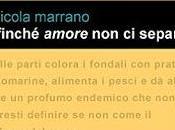 """recensione giorno: """"FINCHE' AMORE SEPARI"""" Nicola Marrano"""
