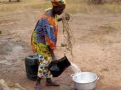 Volontario Bambara Mali