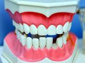 Prevenzione cura denti migliori ritrovati