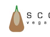 Scotti Vegan Shoes