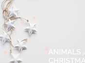 Animal jungle Christmas Viridea