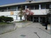 Analisi questionari Liceo Scientifico