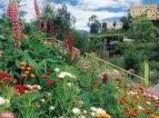 """festeggiare anni attività, Giardini """"Sissi"""" inaugurano """"Regno sotterraneo delle piante"""""""