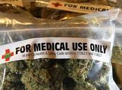 Cannabis terapeutico: gennaio vendita farmacia Italia