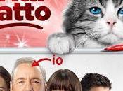Vita Gatto