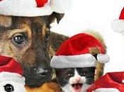 Natale regalate animali!!